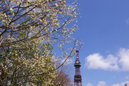 テレビ塔と