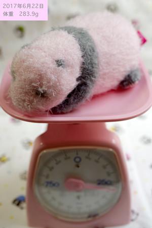 22日体重